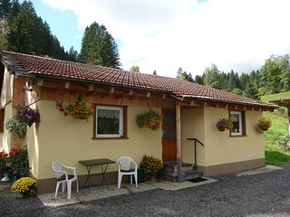Nice House with Television and Microwave - Lenzkirch vacation rentals