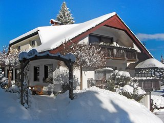 Bright Dittishausen Condo rental with Internet Access - Dittishausen vacation rentals