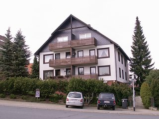 Beautiful 1 bedroom Braunlage Condo with Television - Braunlage vacation rentals