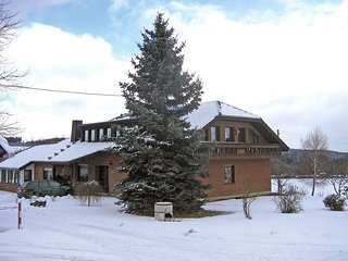 Bright Adenau Apartment rental with Television - Adenau vacation rentals
