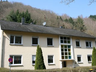 Bright Condo with Television and DVD Player - Traben-Trarbach vacation rentals