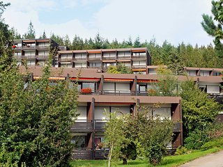 Nice Condo with Internet Access and Shared Outdoor Pool - Schonach vacation rentals