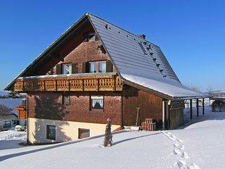 Beautiful 2 bedroom Condo in Furtwangen with Television - Furtwangen vacation rentals