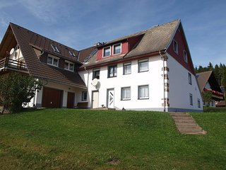 Cozy Bubenbach Apartment rental with Television - Bubenbach vacation rentals