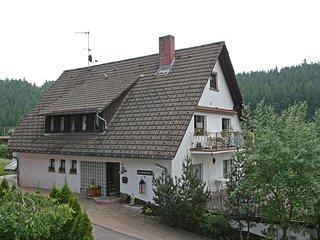 Cozy 2 bedroom Vacation Rental in Bubenbach - Bubenbach vacation rentals