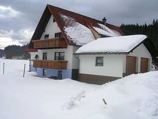 Bright 3 bedroom Vacation Rental in Bubenbach - Bubenbach vacation rentals