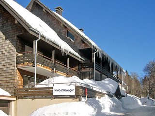 Bright 2 bedroom Vacation Rental in Menzenschwand-Hinterdorf - Menzenschwand-Hinterdorf vacation rentals