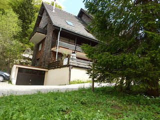 Nice 2 bedroom Condo in Menzenschwand-Hinterdorf - Menzenschwand-Hinterdorf vacation rentals