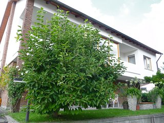 Nice Condo with Television and Balcony - Pfullendorf vacation rentals