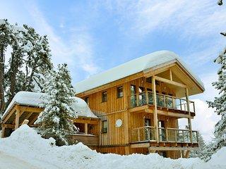 Alpenpark Turrach Steinalm #5983.9 - Turracher Hohe vacation rentals