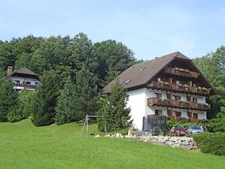 Comfortable 1 bedroom Condo in Unterach am Attersee - Unterach am Attersee vacation rentals