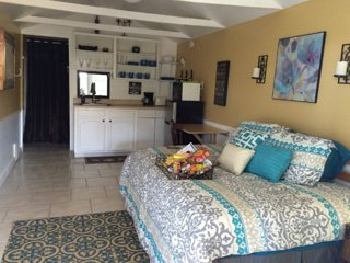 Adorable Studio with Internet Access and A/C - Balcones Heights vacation rentals