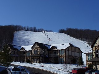 Ski In/Ski Out at Boyne Mountain Ski Resort - Boyne Falls vacation rentals