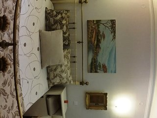 Luxurious comfortable flat - Belgrade vacation rentals