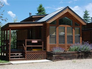 "Cozy ""Modular"" Style 1 BR with Sleeping Loft Cabin at Three Rivers Resort in Almont (#35) - Almont vacation rentals"