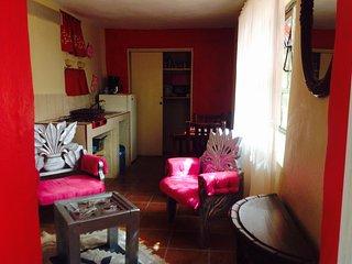 Apartment in central Guanajuato - Guanajuato vacation rentals