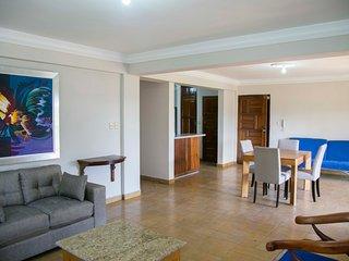 Gazcue, Santo Domingo, recently renovated 2 bedroom colonial style apartment - Santo Domingo vacation rentals