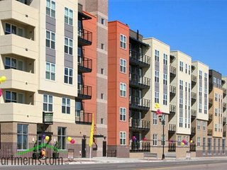 AMAZING LOCATION!! Denver/Washington Park - Denver vacation rentals
