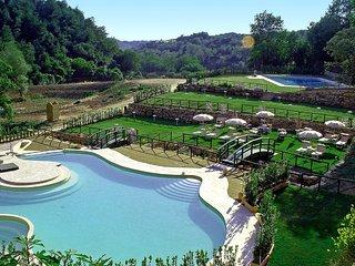 Comfortable 2 bedroom Pitigliano Condo with Shared Outdoor Pool - Pitigliano vacation rentals