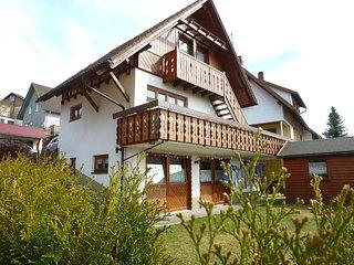 Nice Condo with Television and Balcony - Furtwangen vacation rentals