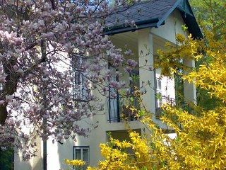 Wienerwald Villa mit Pool #6060.1 - Tullnerbach vacation rentals