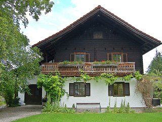 Beautiful Strobl vacation House with Television - Strobl vacation rentals