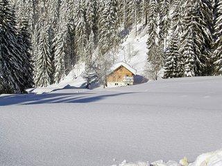 Comfortable Saint Martin am Tennengebirge House rental with Internet Access - Saint Martin am Tennengebirge vacation rentals