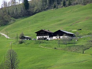 Beautiful Maria Alm Apartment rental with Internet Access - Maria Alm vacation rentals
