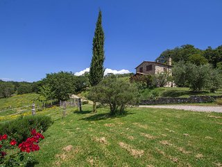 Comfortable Scansano vacation House with Shared Outdoor Pool - Scansano vacation rentals