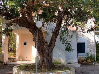 Nice Condo with Television and Balcony - San Menaio vacation rentals