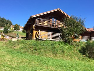 Chalet with 3 rooms in Xonrupt-Longemer, with wonderful mountain view, furnished garden and WiFi - Xonrupt-Longemer vacation rentals