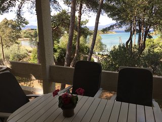 Drossia, Chalkis - 3 bedroom 1st floor apartment with wonderful sea view terrace and WiFi - Khalkis vacation rentals
