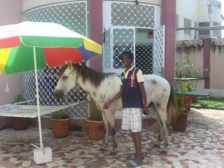 SenegambiaStrip walkingdistance VIP Villa - Kerr Serign vacation rentals