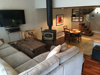 Killer Views, Close to Lifts, Convenience, Spacious, Hot Tub, Fireplace, Garage! - Crested Butte vacation rentals