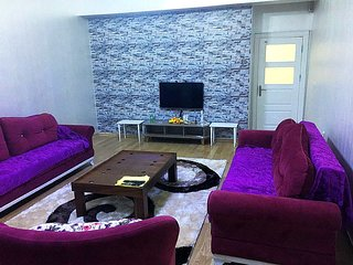 Cozy 3 bedroom Condo in Osmangazi - Osmangazi vacation rentals