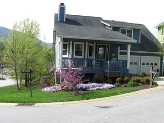 Cozy 3 bedroom House in Asheville - Asheville vacation rentals