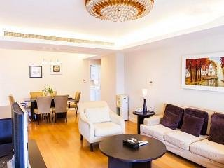 Cheap***NICE! FamilyFriendly CENTRAL MTR CLEAN BIG - Hong Kong vacation rentals