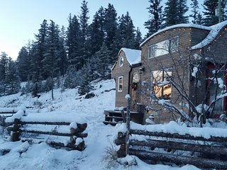 Tiny House B&B Getaway with hot tub - Williams Lake vacation rentals
