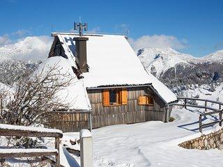 Koča Ojstrica - Velika planina - Stahovica vacation rentals