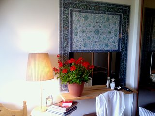 charming apprtment with a river view and a terrace close to Paris and Disneylan - Champigny-sur-Marne vacation rentals