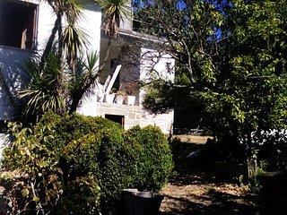 Casa Seara (country house) 3 rooms Oliveira de Frades - Oliveira de Frades vacation rentals