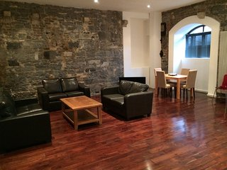 Luxury Distillery Apartment - Dublin vacation rentals