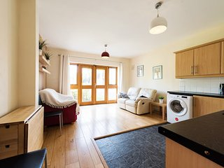 Cozy Dublin Apartment rental with Internet Access - Dublin vacation rentals