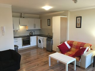 Bright 1 bedroom Apartment in Dublin - Dublin vacation rentals