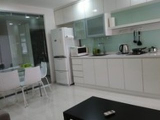 Carve Out A Great Life at Orchard Road Apartment (V FC) - Singapore vacation rentals