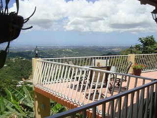 Gorgeous House with A/C and Satellite Or Cable TV - Bayamon vacation rentals
