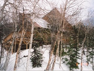 Cozy Mountain Cabin Close to Monarch Ski Resort - Monarch vacation rentals