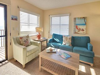 Comfortable 2 bedroom Apartment in North Redington Beach - North Redington Beach vacation rentals