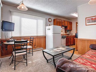 Park Meadows Lodge 8D by Ski Country Resorts - Breckenridge vacation rentals