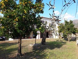 Cozy 2 bedroom Terras de Bouro House with Internet Access - Terras de Bouro vacation rentals